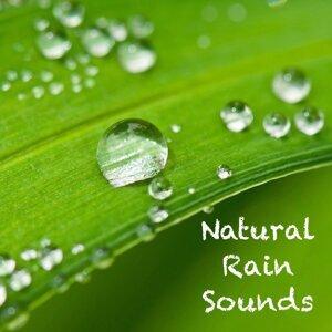 Sleep Sounds of Nature, Spa & Spa, Asian Zen Spa Music Meditation 歌手頭像