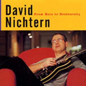 David Nichtern 歌手頭像