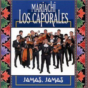 Mariachi Los Caporales 歌手頭像