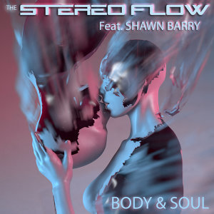 The Stereo Flow 歌手頭像