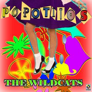 The Wildcats 歌手頭像