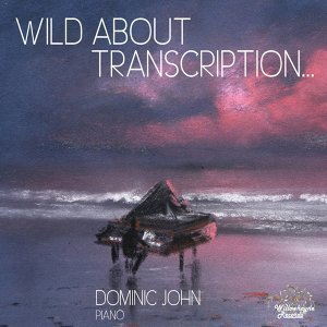 Dominic John 歌手頭像
