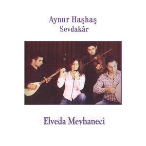 Aynur Haşhaş 歌手頭像