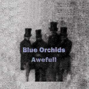 Blue Orchids 歌手頭像
