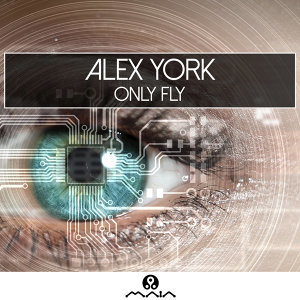 Alex York 歌手頭像