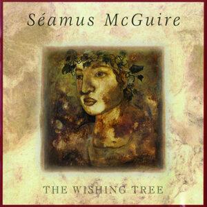 Séamus McGuire 歌手頭像