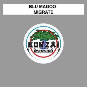Blu Magoo