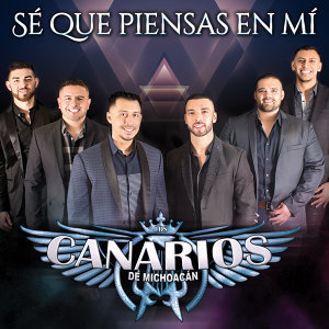 Los Canarios de Michoacan 歌手頭像