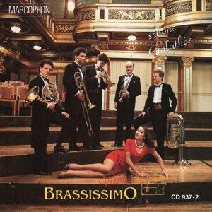 Brassissimo Vienna 歌手頭像