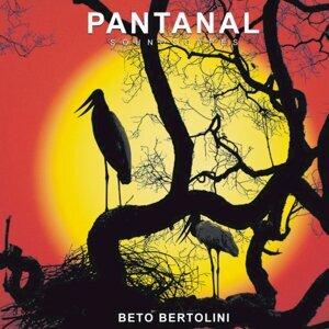Beto Bertolini 歌手頭像