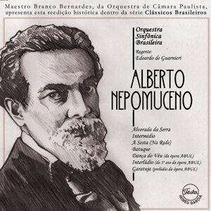 Brazilian Symphony Orchestra (OSB) 歌手頭像