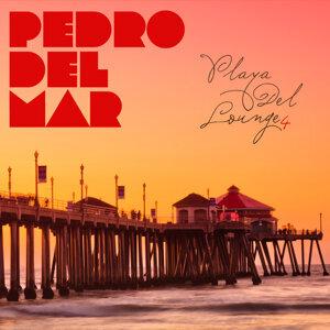 Pedro Del Mar - Playa Del Lounge 4 歌手頭像
