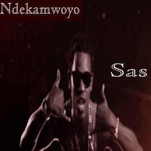 SAS 歌手頭像