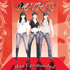 Potras 歌手頭像