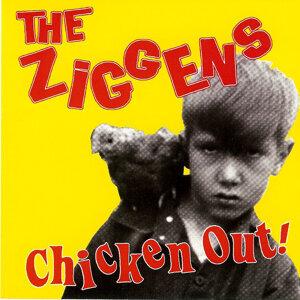 The Ziggens 歌手頭像