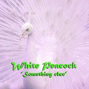 White Peacock 歌手頭像