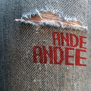 Ande Andee Artist photo