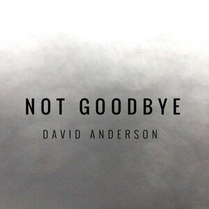David Anderson 歌手頭像