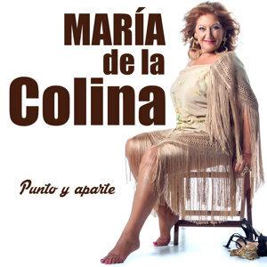 María de la Colina 歌手頭像