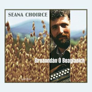 Breanndán Ó Beaglaoich 歌手頭像