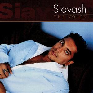 SIAVASH 歌手頭像