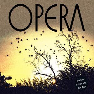 Opera 歌手頭像