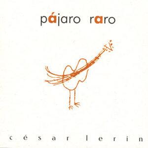 Cesar Lerin 歌手頭像