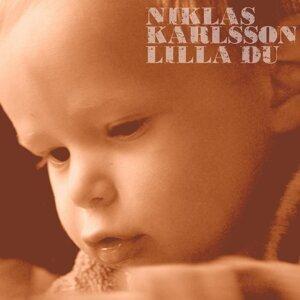 Niklas Karlsson 歌手頭像