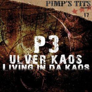 P3 Ulver Kaos 歌手頭像