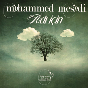 Muhammed Mesudi 歌手頭像