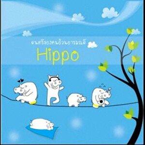 Hippo 歌手頭像
