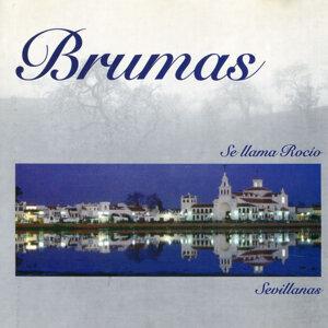 Brumas 歌手頭像