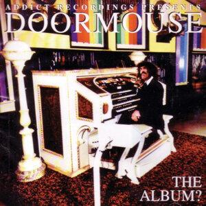 Doormouse 歌手頭像