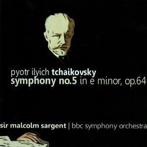 The BBC Symphony Orchestra 歌手頭像