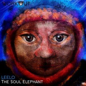 The Soul Elephant