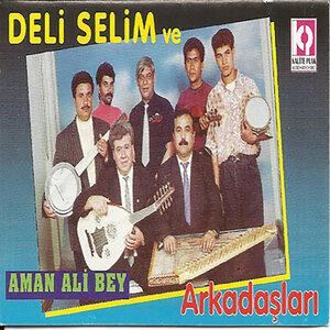 Deli Selim ve Arkadaşları 歌手頭像