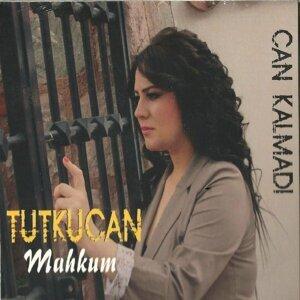 Tutku Can 歌手頭像