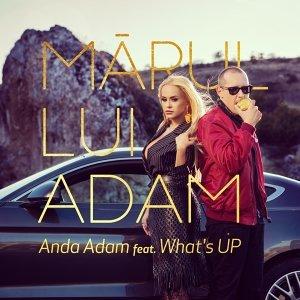 Anda Adam 歌手頭像