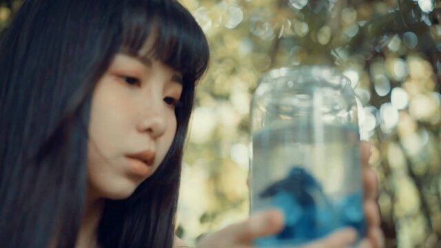 清澈的湖水裡有魚 (Fish in the Clear Lake) - 泰文版