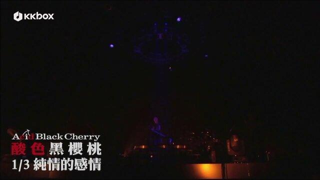 1/3 純情的感情(短版MV)