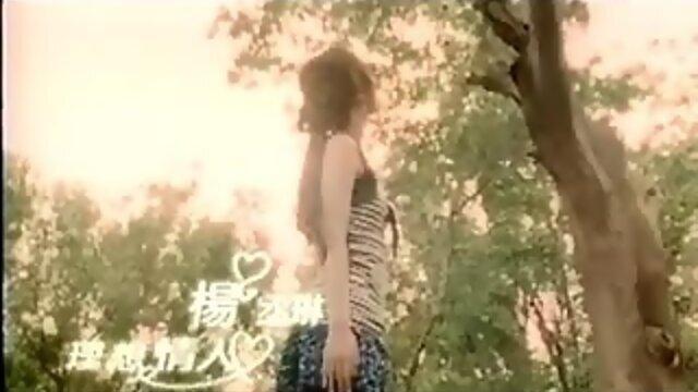 理想情人 (Li Xiang Qing Ren)