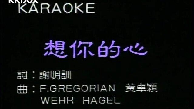 想你的心 - Album Version(Karaoke)