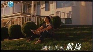 候鳥-候鳥電影主題曲 (劉若英演唱)