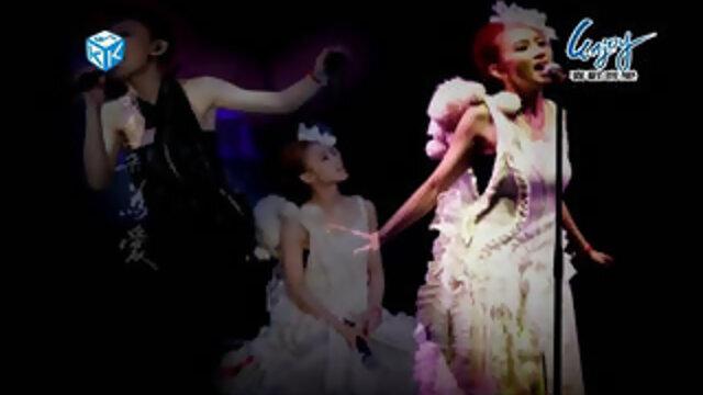野薔薇(2009 Live Concert)