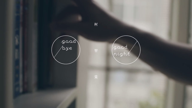 Goodbye & Goodnight - 中文版