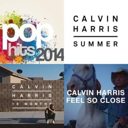 Various Artists - Pop Hits 2014