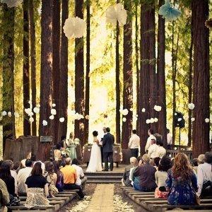 徜徉大自然的森林系婚禮