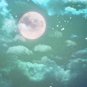 明月高掛,共享歡聚時光