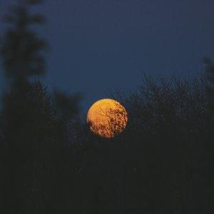 月圓人團圓,月光下有你就暖和