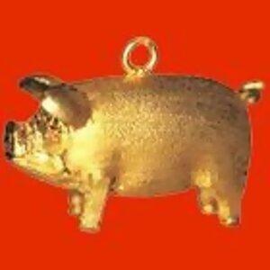 「豬」你新年快樂